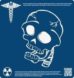 Skull X ray 10 vector