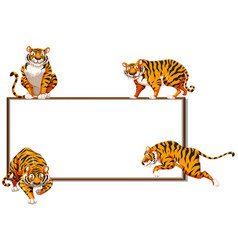 Border template with four wild tigers vector
