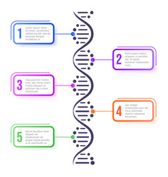 dna molecule concept abstract diagram molecule vector image