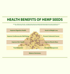 Health benefits hemp seeds horizontal vector