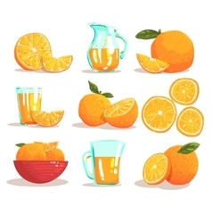 Oranges And Orange Juice Cool Style Bright vector