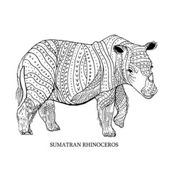 sumatran rhinoceros rare animal conservation vector image