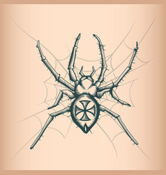 vintage spider drawing tattoo style vector image