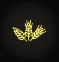 wheat rye and barley grains icon in glowing neon vector image
