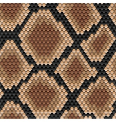 Brown snake seamless pattern vector image