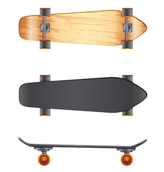 Wooden skateboards vector image vector image