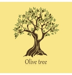 Natural olive tree with branches for sticker vector image vector image