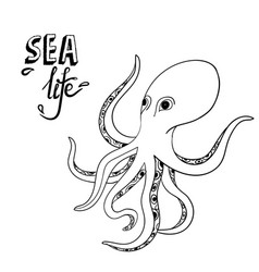 hand drawn octopus sketch wild sea life creature vector image