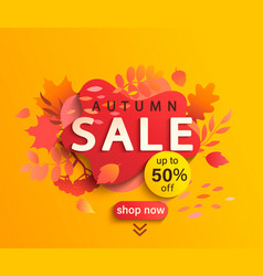 autumn sale banner season discount poster vector image
