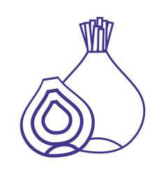 line organic onion nutrition vegetable taste vector image