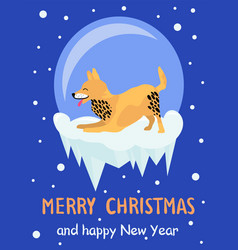 Merry christmas and happy new year akita congrats vector