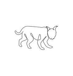 one continuous line drawing fierce lynx vector image
