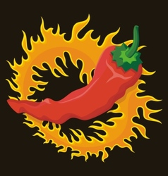pepper flame vector image