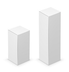 tall box vector image
