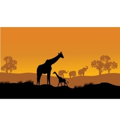 Wild african animals silhouettes vector