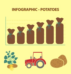 potatoes infographic vector image