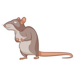 cartoon smiling rat vector image