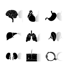 human body icons vector image vector image
