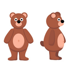 Bear from the front bear vector