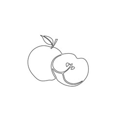 continuous line apple and sliced apple vector image