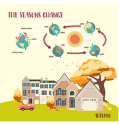 Earths seasons cycle vector