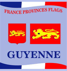 Flag of french province guyenne vector