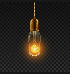 light bulb shiny illuminated light bulb vector image