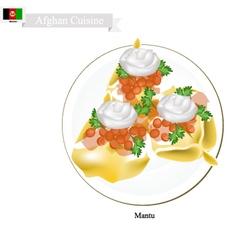 Mantu or afghan dumpling filled with beef or lamb vector