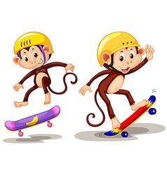 Two monkeys playing skateboard vector