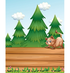 A cat above the empty wooden boards near the pine vector image vector image