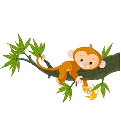 cute baby monkey on a tree holding banana vector image