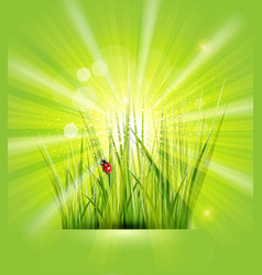 spring background with green grass sunshine and a vector image vector image