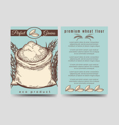 Brochure template of premium mill product vector