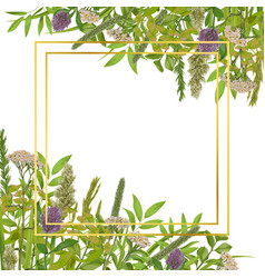 Card template with greenery vector