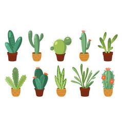 cartoon cactus set set bright cacti vector image