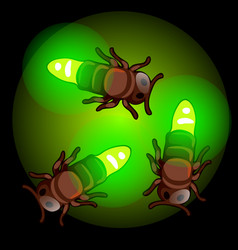 Fireflies on green light insects living bulbs vector