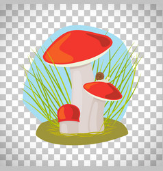forest mushroom with grass and snail vector image