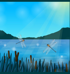 insects dragonflies realistic vector image