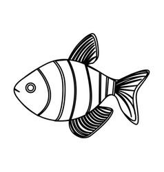 Monochrome contour with striped fish vector