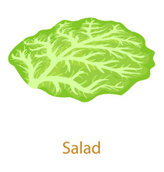Salad icon isometric 3d style vector