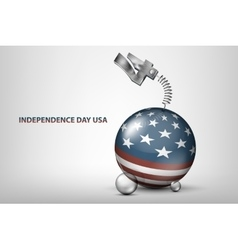 usa independence day with flag vector image