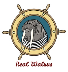 The Walrus vector image vector image