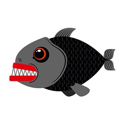 Piranha marine predator on white vector image