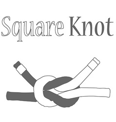 Square knot silhouette vector image