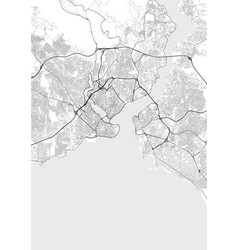 city map istanbul in black and white vector image