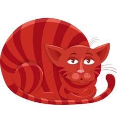 red cat character cartoon vector image