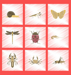 Assembly flat shading style bug snail butterfly vector