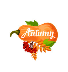 autumn pumpkin poster of leaf fall vector image vector image