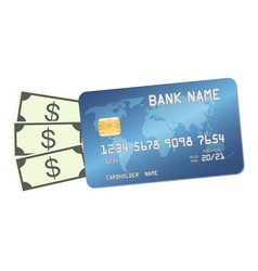 credit card with money banknotes dollars vector image