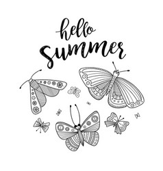 Hello summer greeting card with butterflies vector